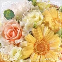 fleuret フルーレ*