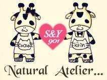 S&Y901Na_At