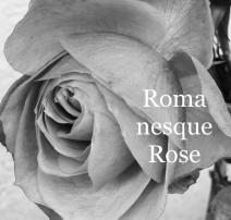 RomanesqueRose