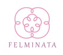 フェルミナータ