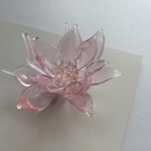 Aoimori Design