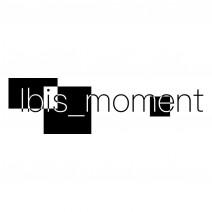 Ibis_moment