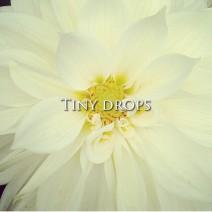 Tiny_drops