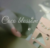 Coco blossom