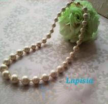 Lapisia