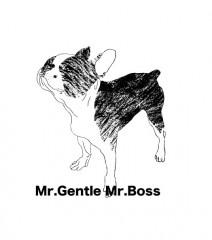 MrGentle MrBoss