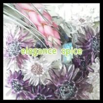 elegance spice