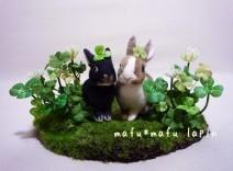 mafu*mafu lapin