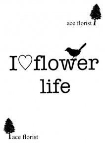 ace florist