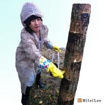 MILEILEE