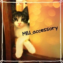 MIU_accessory