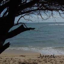 Jumel.