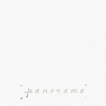 'panorama'