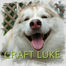 CRAFT LUKE