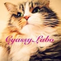 cyassy Labo.