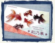 金魚屋 by和乃華