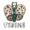 TEBINE studio