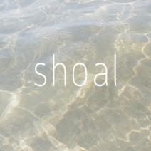 shoal
