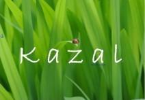 kazal