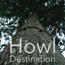 Howl Destination