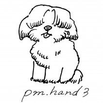 pm.hand3