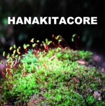 HANAKITACORE