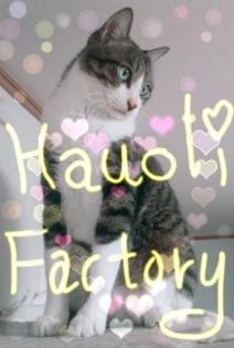 Hauoli Factory