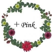 +Pink