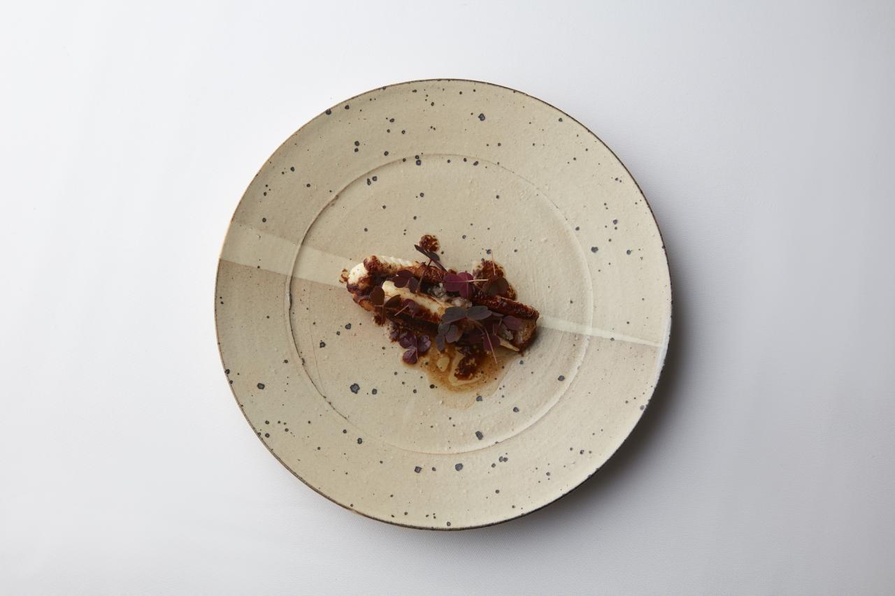 唐津らしい味わいのある土味とモダンな線が調和し、様々な料理を引き立てる。