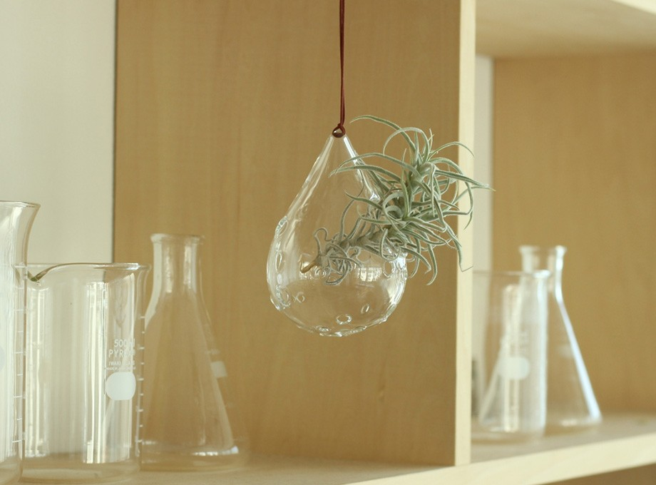 -Bubble Drop- for Air plants flower vase