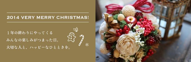 2014 Very Merry Christmas!
